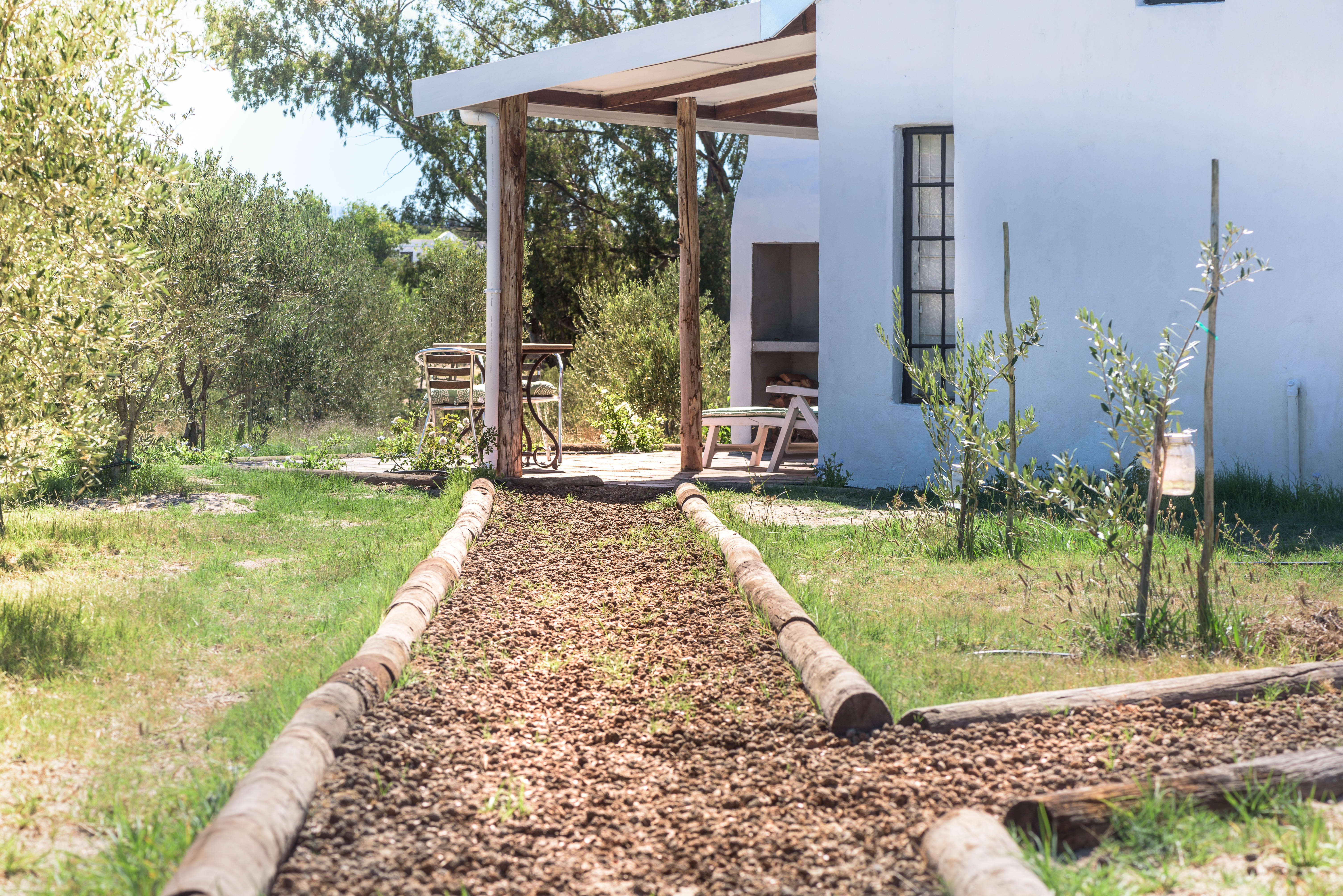 Peach-pit-path to Olive Cottage At Boerfontein