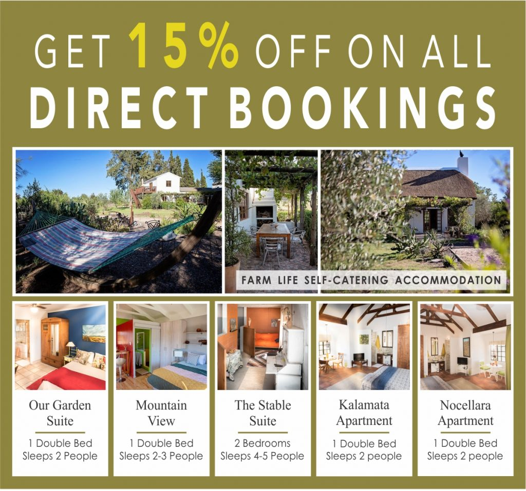 15% Off Direct Booking Accommodation